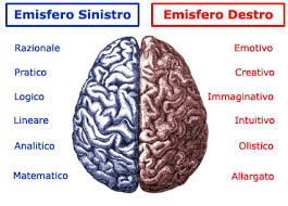 Emisferi Cervello